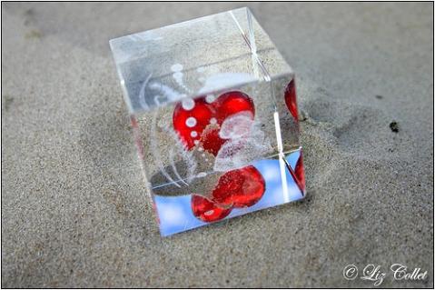 Wie ein Fisch auf dem Trockenen © Liz Collet